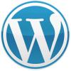 ottimizzazione-seo-wordpress